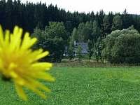 Obrázek z okolí