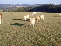 pastviny - školka - Mirošov