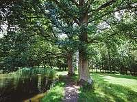 jemnický zámecký park -