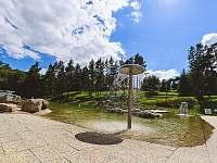 koupaliště přírodní biotop - Jemnice