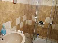 koupelna 1 - pronájem chalupy Chlum-Korouhvice