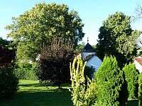 Okolí chaty - k pronajmutí Perneštejnské Jestřabí - Maňová