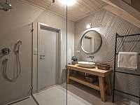 Koupelna se sprchou - Blatiny