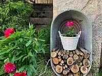 Zahrada - chalupa k pronájmu Moraveč