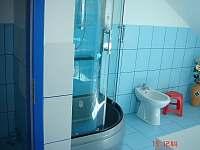 Apartmány Batelov - pronájem apartmánu - 12