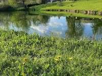 Pohled na obec Studnice -