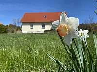 pohled na dům ze zahrady - chalupa k pronájmu Seč - Proseč
