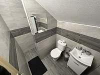 Koupelna s WC - pronájem apartmánu Nová Cerekev - Částkovice