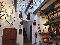 Lovecká místnost - chalupa ubytování Kameničky