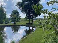 Rybník na pozemku - chalupa k pronájmu Kameničky
