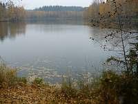 Brázdův rybník u Nové Říše