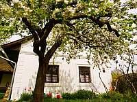 Nový Rychnov jarní prázdniny 2022 pronajmutí