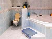 Koupelna 1 - pronájem vily Chlum