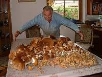 Houby, houby, houby ... - Bílek