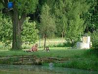 Odpočinek u rybníka