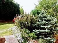 zahrada kolem objektu - chalupa k pronájmu Želiv
