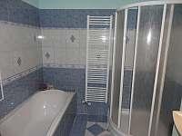 koupelna přízemí - vila k pronajmutí Zubří u Nového Města na Moravě