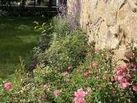 Zahrada - Růžená