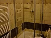 sprchový kout a wc v apartmánu č.2