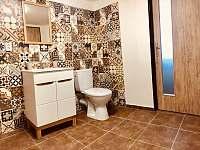 WC - pronájem chalupy Trhová Kamenice - Rohozná