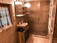 Koupelna se sprchovým koutem - chata k pronajmutí Hluboká u Trhové Kamenice