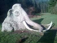 sochy v okolí - pronájem chalupy Sázava