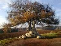sochy v okolí - Sázava