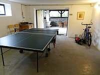 pingpongový stůl a elektrické šipky v garáži - chalupa k pronajmutí Herálec