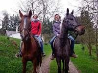 Nabízíme svezení na koních