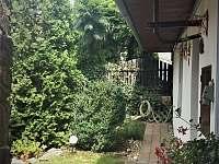zahrada - pronájem chalupy Police u Jemnice