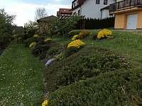 Zahrada - chalupa ubytování Kamenice nad Lipou