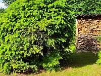 Dřevník - pronájem chaty Polnička