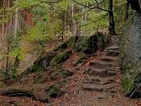 Podzimní výlet do údolí Doubravy nedaleko. - chalupa k pronajmutí Havlíčkova Borová