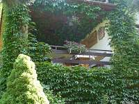 Terasa v zeleném