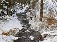 Okolí v zimě - Lidmaň