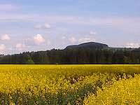 Toulky přírodou - cesta na rozhlednu Rosička