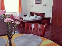 Žlutý pokoj - apartmán k pronájmu Nové Dvory