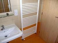 Koupelna se sprchovým koutem - chata k pronájmu Tři Studně