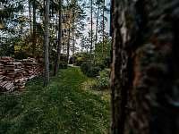 Pozemek u chaty 1 - ubytování Broumova Lhota