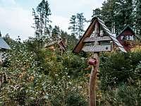 Studánka v blízkosti chaty - Broumova Lhota