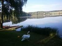 vhled na rybník - chata k pronájmu Opatov