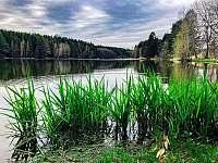 Domanínský rybník - chata k pronájmu Bohuňov