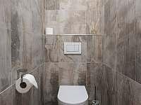 toaleta - apartmán k pronájmu Tři Studně