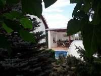 Zeleň kolem bazénu. - apartmán ubytování Holetín u Hlinska
