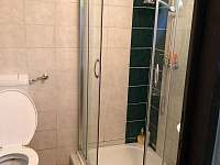 Koupelna se sprchovým koutem a WC - chata k pronájmu Vaneč