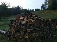 Majitel chalupy při přípravě dřeva na zimu.