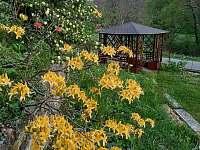 Zahrada s altánkem - chalupa k pronajmutí Leštinka
