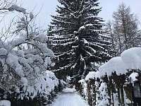 Cesta k chatě - zima - k pronajmutí Tři Studně