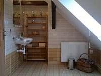 Horní koupelna - pronájem chalupy Chyšná