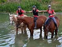koně v rybníce - Újezdec